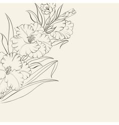 Beautiful fresh iris flowers vector image
