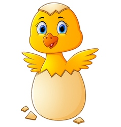Cracked egg with cute chicken inside vector image