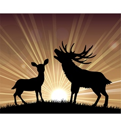 Silhouette a kangaroo and deer vector image