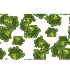 cabbage seamless pattern on white vector image