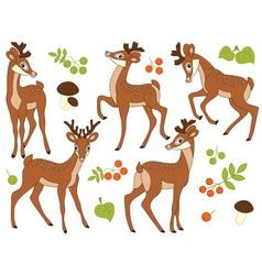 Woodland Deers vector image