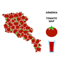 armenia map collage of tomato vector image