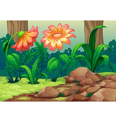 Giant flowers in the forest vector
