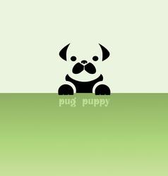 pug puppy vector image