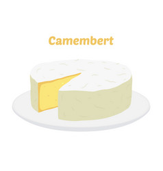 camembert cheese plate cartoon flat style vector image