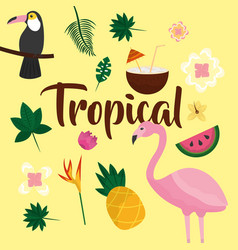 Tropical fruit flower vector