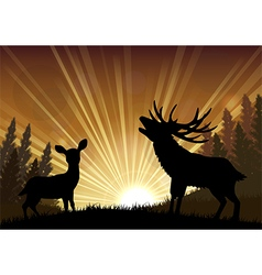 Silhouette a kangaroo and deer the standing vector