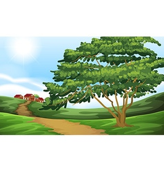 A pathway going to the houses vector image vector image
