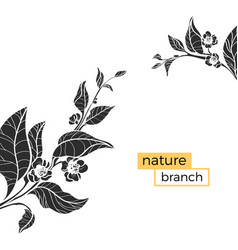 template nature branch vector image