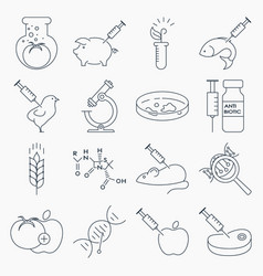 Collection of genetic modification outline icons vector