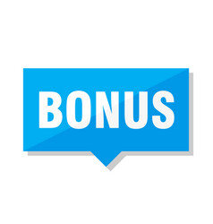 bonus price tag vector image