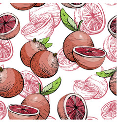 Citrus seamless pattern with grapefruit vector
