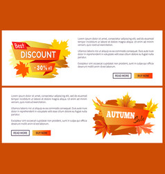 discounts offer special price invitation vouchers vector image