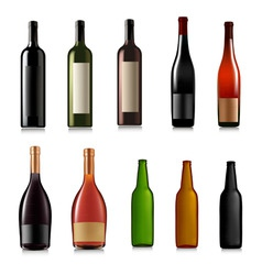 set of different bottles vector image vector image