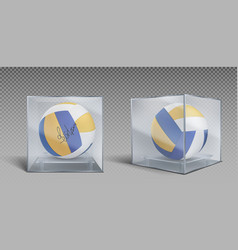 Volleyball balls trophy in glass or plastic case vector