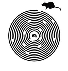 Black maze puzzle vector image