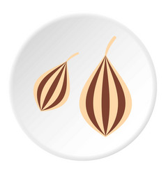 Ajwain icon circle vector