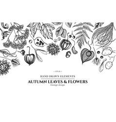 Design with black and white rowan rowan acorn vector