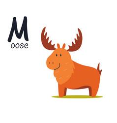 funny image moose and letter m zoo alphabet vector image
