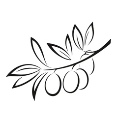 Olive Branch with Berries Black Icon vector image