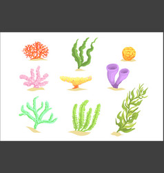 set cartoon underwater plants seaweeds and vector image