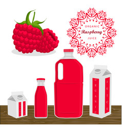 The theme raspberry vector