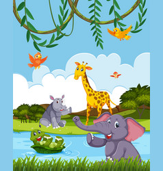 wild animals in the nature vector image