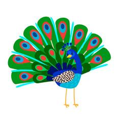 cartoon peacock bird icon vector image