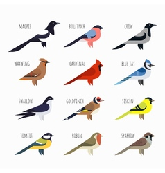 set of Colorful bird icons Cardinal magpie sparrow vector image