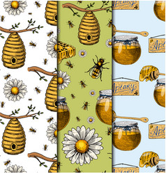 apiary bee chamomile hand drawn vintage vector image