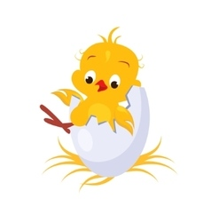 Cartoon Chicken in an Egg vector image