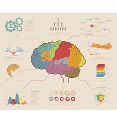 Infographic Elements Brain concept vector