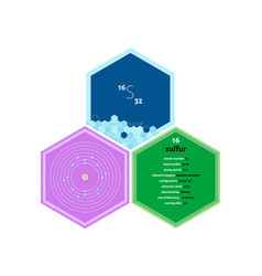 Infographics element sulfur vector