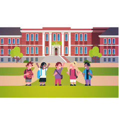 Mix race pupils standing school building yard boys vector