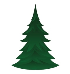 Pine tree isolated icon vector