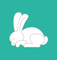 White rabbit isolated cute hare bunny animal vector