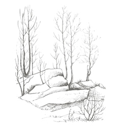 Birch trees and rocks vector