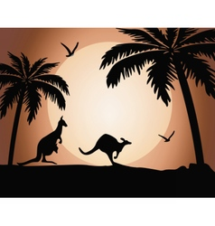 Kangaroo silhouette on sunset vector image