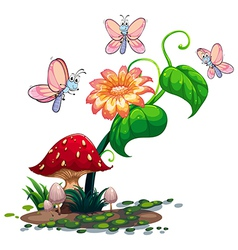 A blooming flower surrounded with three vector image vector image