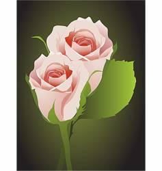 rosebuds floral background vector image vector image