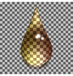 transparent bubbles vector image vector image