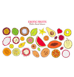 Colored sketch natural exotic products collection vector
