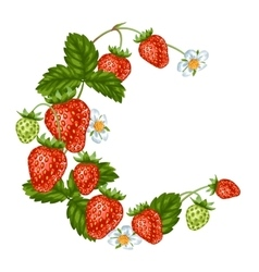 Decorative element with red strawberries vector