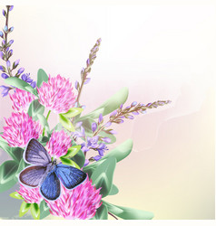 Floral background with field flowers clover vector