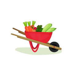metal wheelbarrow full of ripe vegetables natural vector image