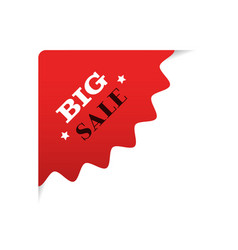 special offer big sale promo marketing holiday vector image