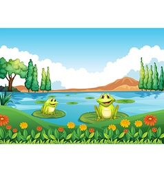Two playful frogs at the pond vector