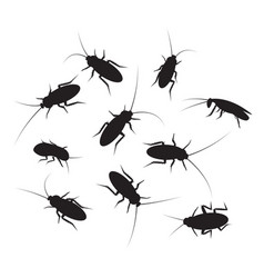 set of black silhouette cockroach with detail vector image