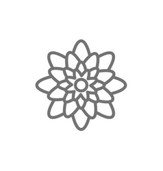 agave mexican flowers line icon vector image