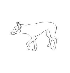 Australian dingo coloring pages vector